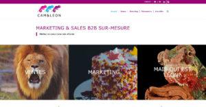 Page d'accueil du site Cam&Léon